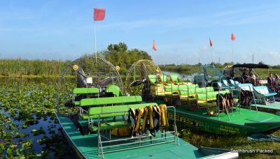 Marsh Beast Airboat Tour